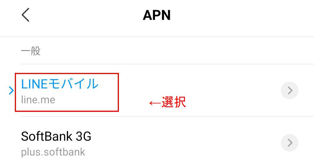 LNEモバイルのアクセスポイント
