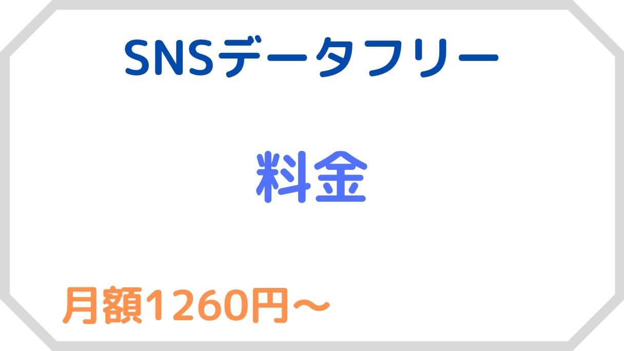 SNSデータフリーの料金